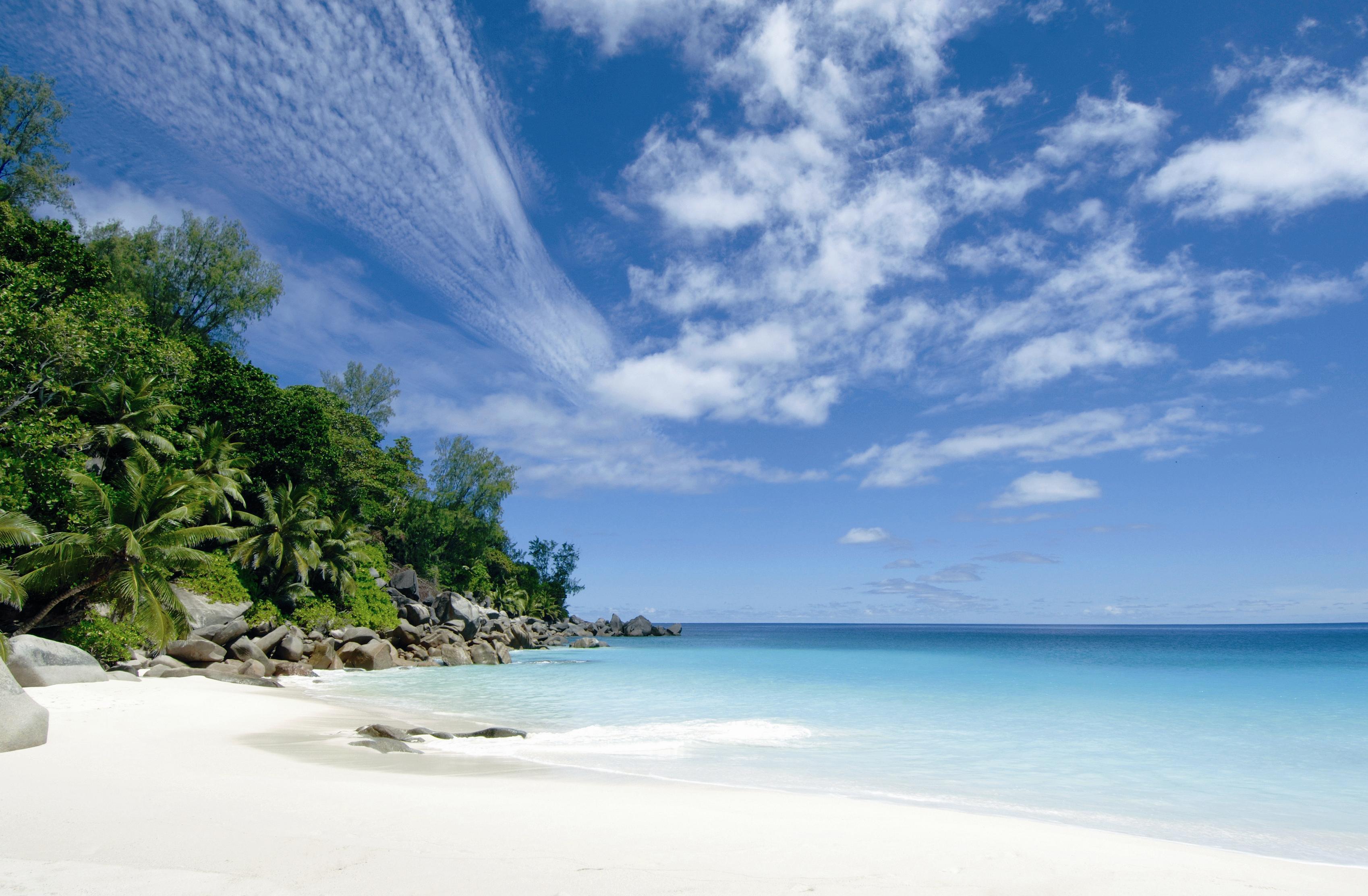 flittern a la carte paradiesischer honeymoon auf den malediven. Black Bedroom Furniture Sets. Home Design Ideas